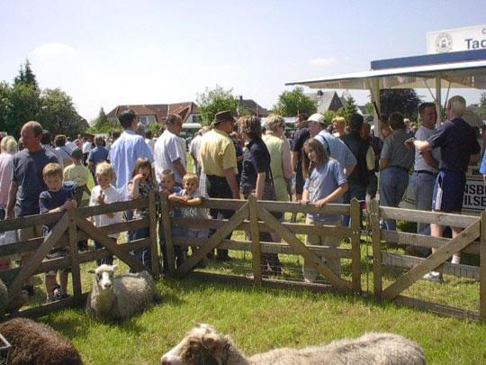 Viöler Bauernmarkt 2003