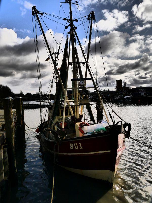 Fotos Husumer Hafen 2016